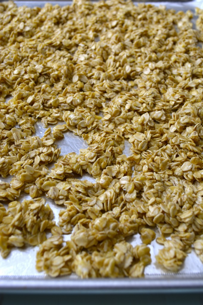 Toasted Coconut Granola Clusters