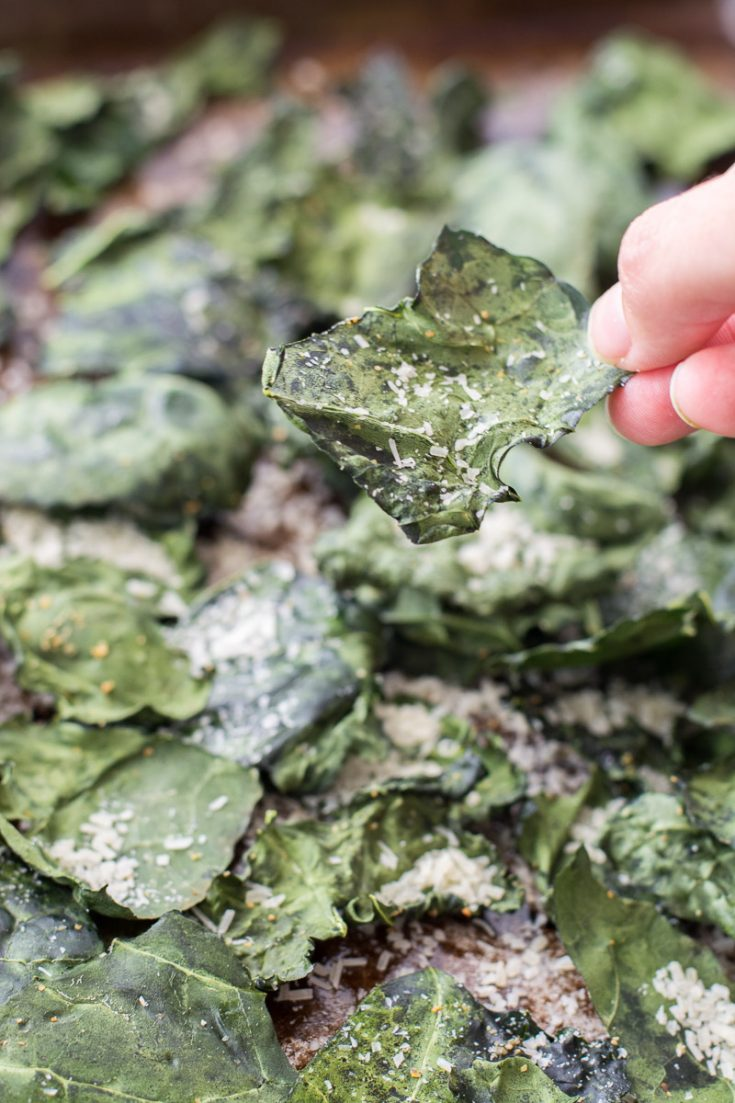 an oven roasted kale chip being held aloft over a baking sheet